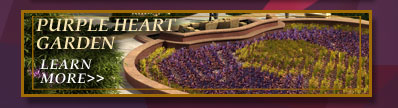 Learn more about the Purple Heart Garden